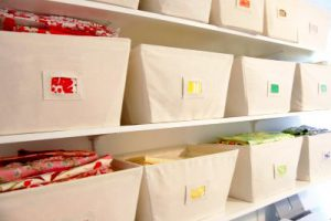 For instance, clear storage bins or canvas bins.
