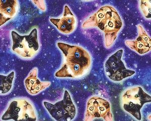 Galaxy Cat fabric by Timeless Treasures