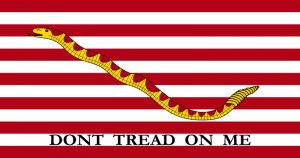 """Don't Tread on Me"" flag."